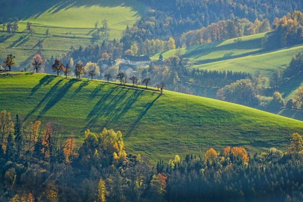 landscape, autumn, green